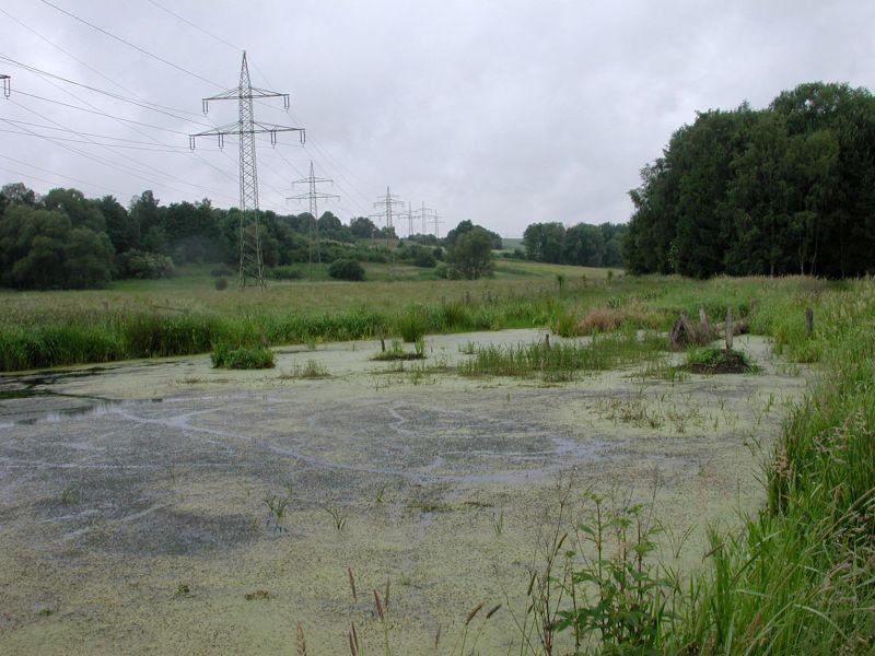 NSG Alter Ruhrgraben